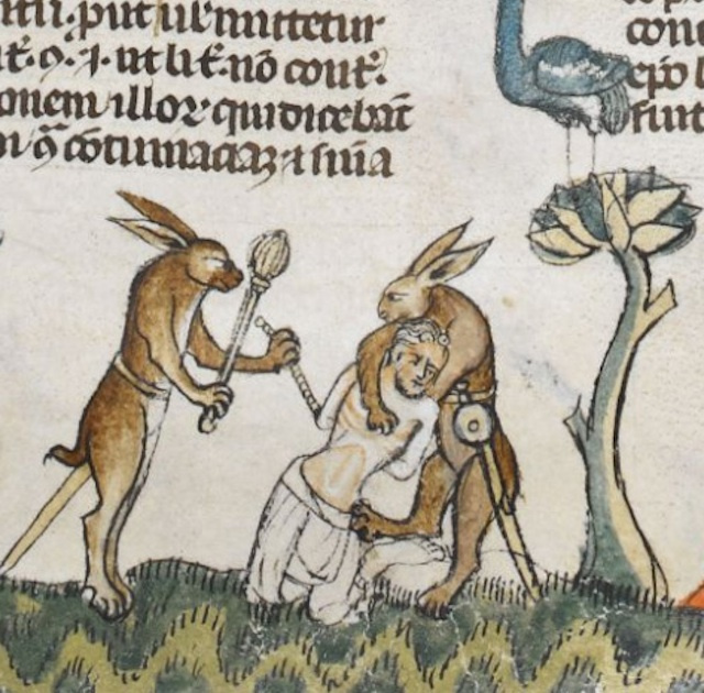 rabbits form The Smithfield Decretals c1300